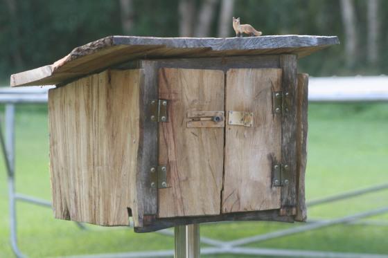 lianas book box