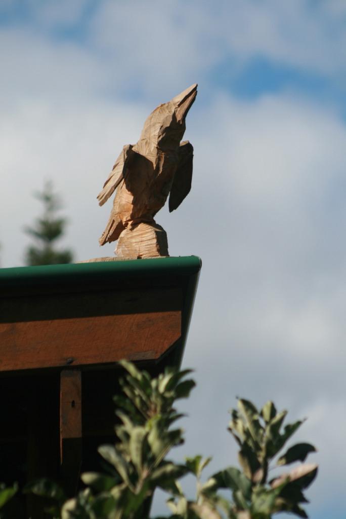 kookaburra child care