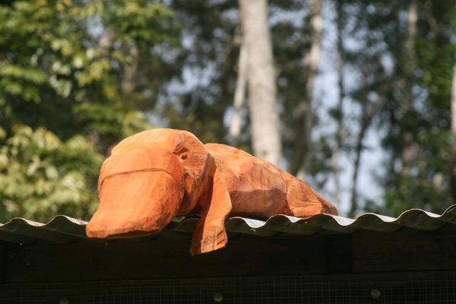 platapus for roof